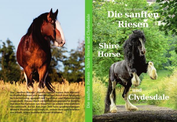 Buch Cover (mittel)