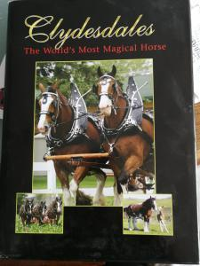 Clydesdales - The World's most magical Horses