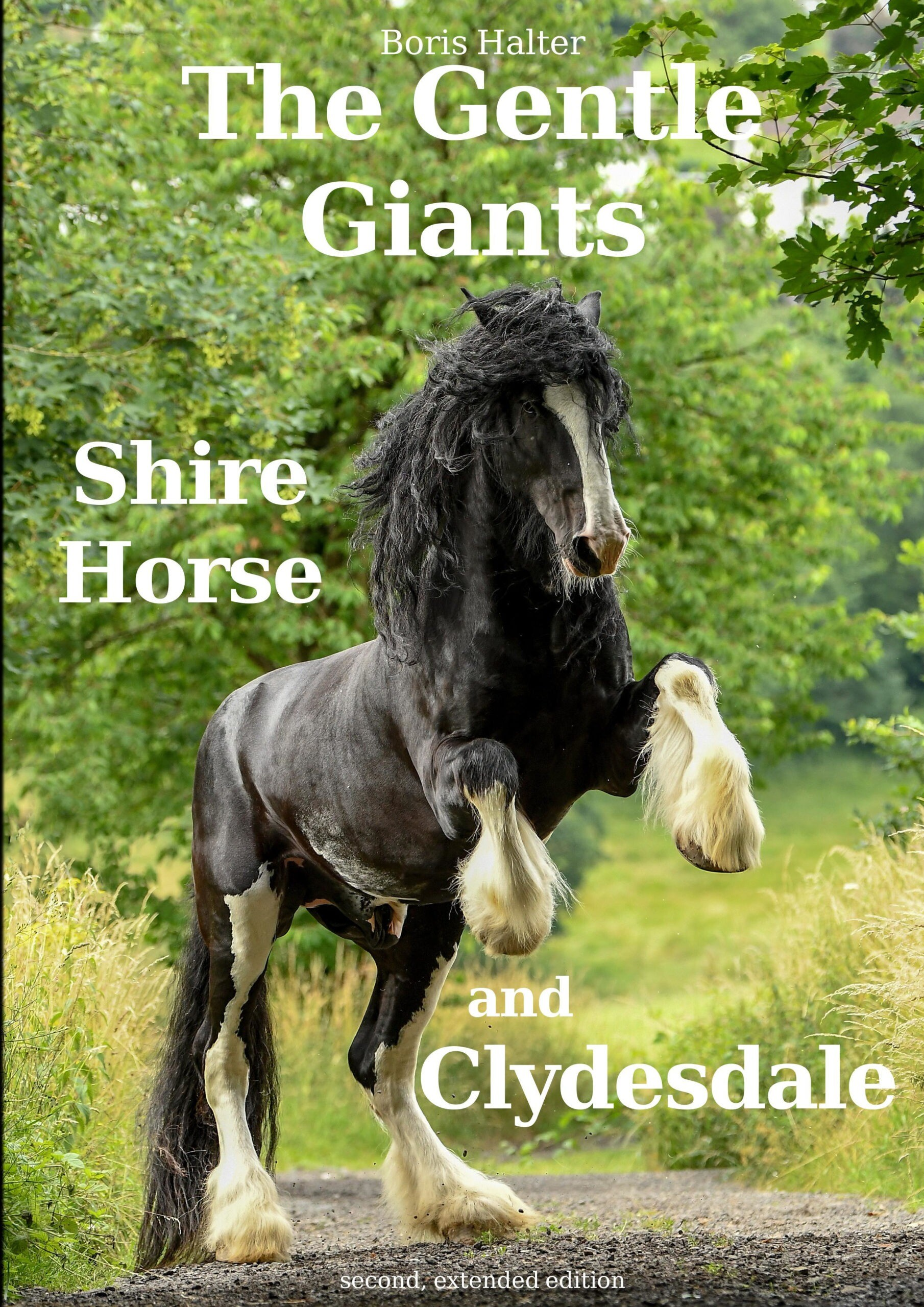 Book The Gentle Giants Shire Horse And Clydesdale English The Gentle Giants Shire Horse And Clydesdale